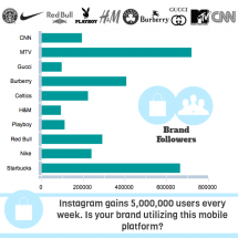 10 Killer Brands on Instagram Infographic
