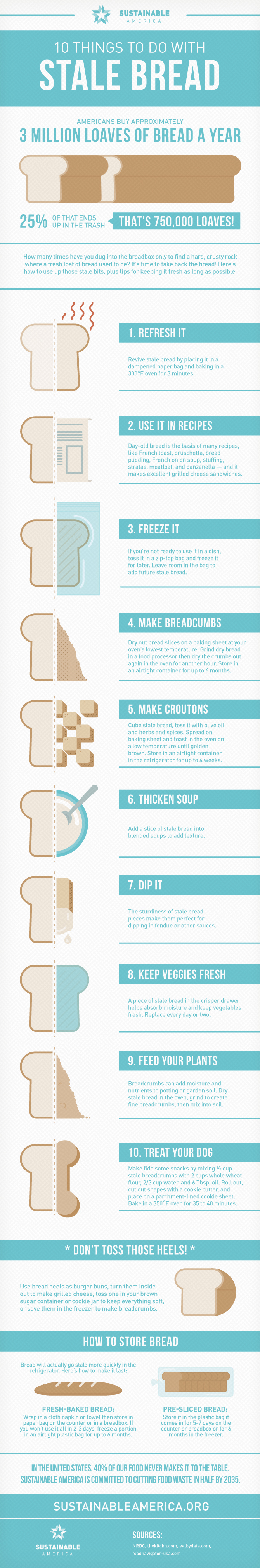 10 Things You Can Do With Stale Bread Infographic