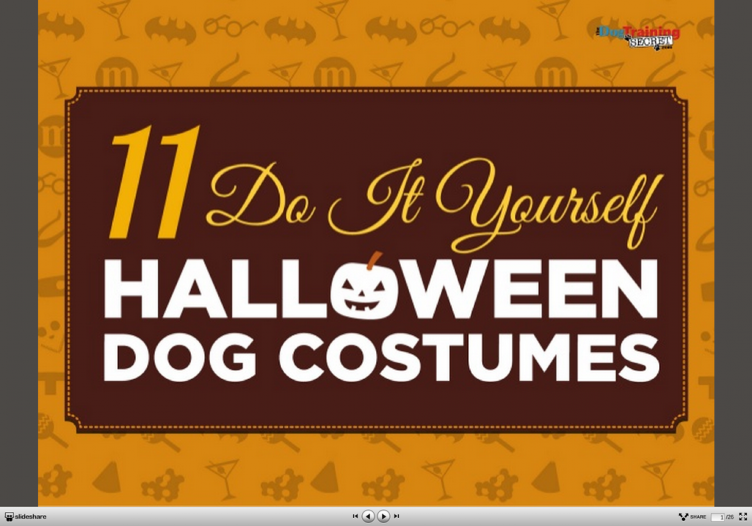 11 Creative DIY Dog Costumes You Can Make In Time For Halloween Infographic