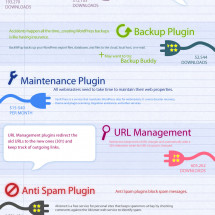 12 Must Have Plugins for WordPress Infographic