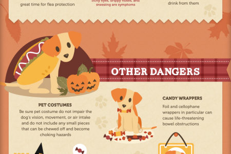 13 Puppy Perils of The Fall Season Infographic
