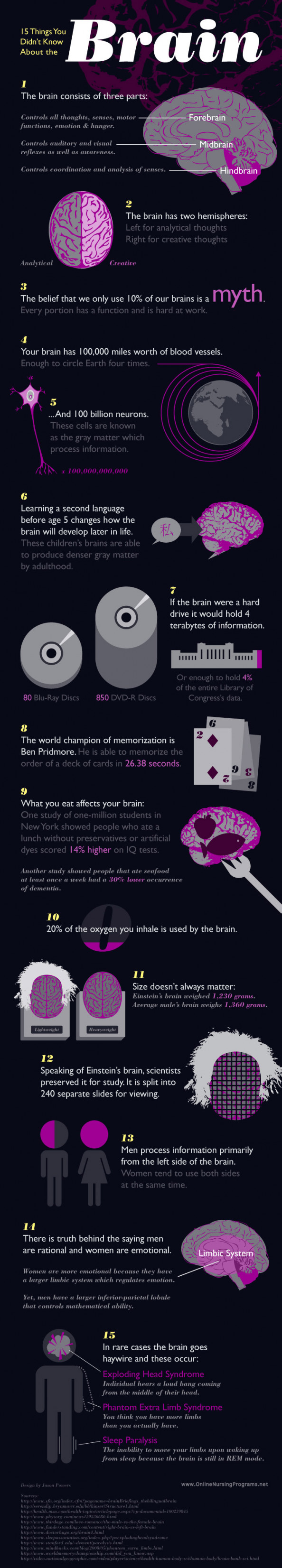 15 Brainy Facts  Infographic