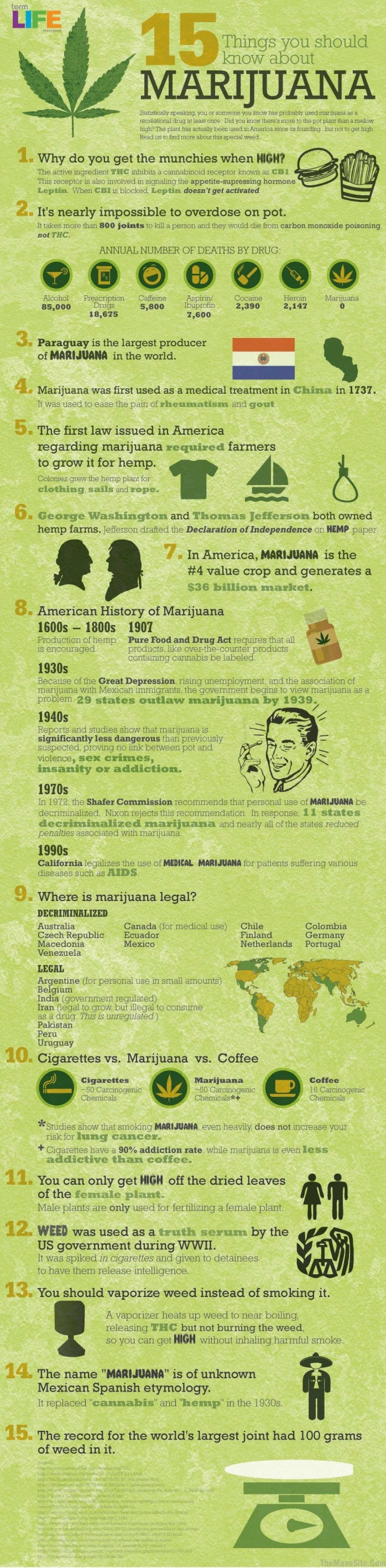15 Things You Should Know About Marijuana Infographic