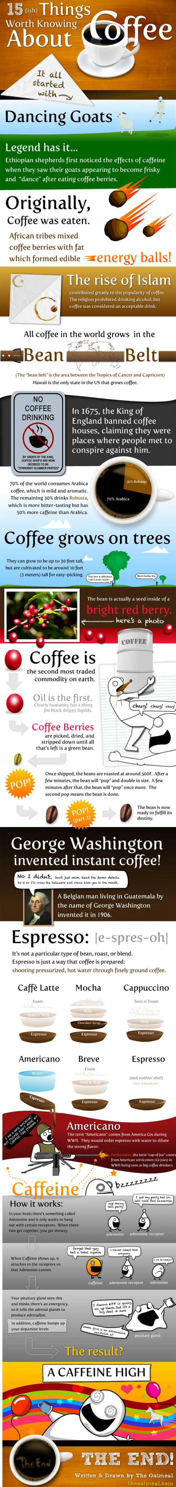 15(ish) Things Worth Knowing About Coffee