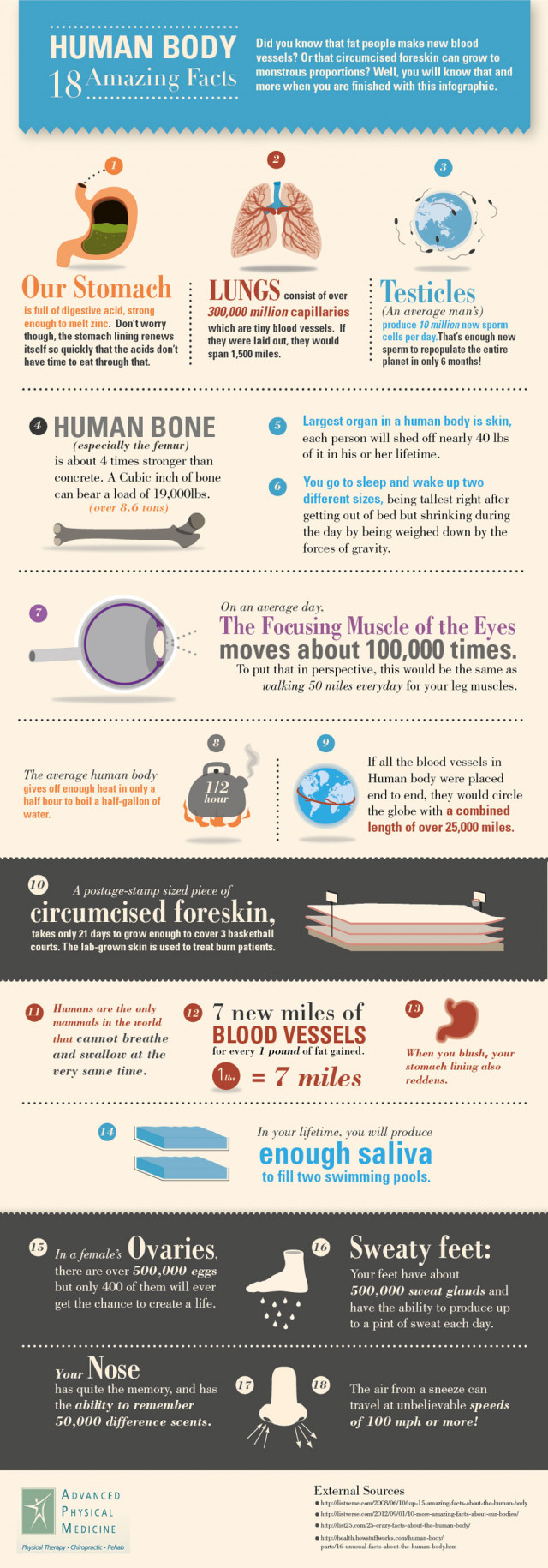 18 Amazing Facts About The Human Body