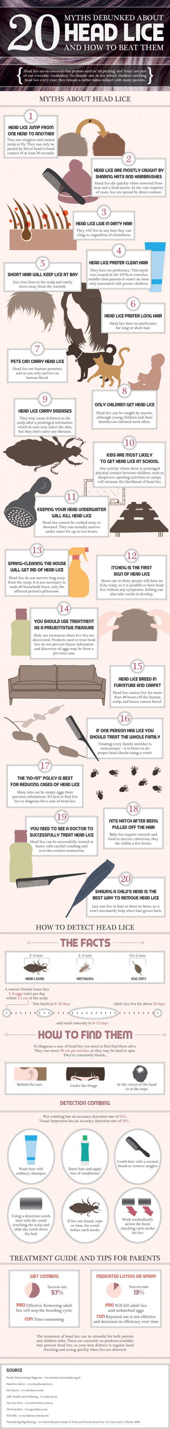 20 Facts About Headlice [Infographic] Infographic