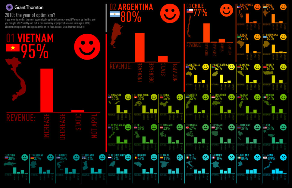 2010: The Year of Optimism Infographic