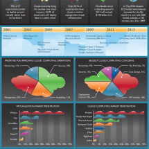 2010 Virtualization and Cloud Computing Survey Infographic