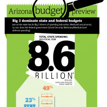 2013 Federal Budget vs. AZ Budget Infographic