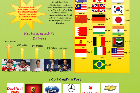 2013 Formula 1 Overview Infographic