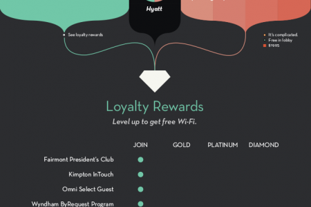 2013 HotelChatter Hotel Wi-Fi Report Infographic