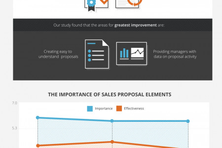 2013 Review of Sales Proposal Effectiveness Infographic