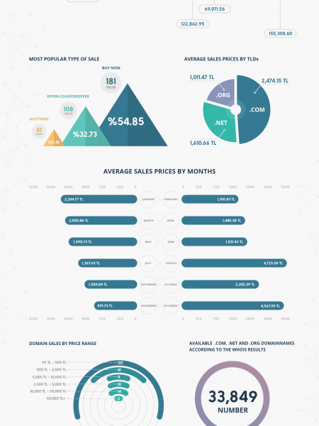 2013 Turkish Domain Market Study Infographic