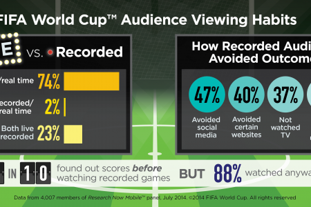 2014 World Cup Audience Viewing Habits  Infographic
