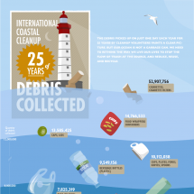 25 years of debris collected Infographic