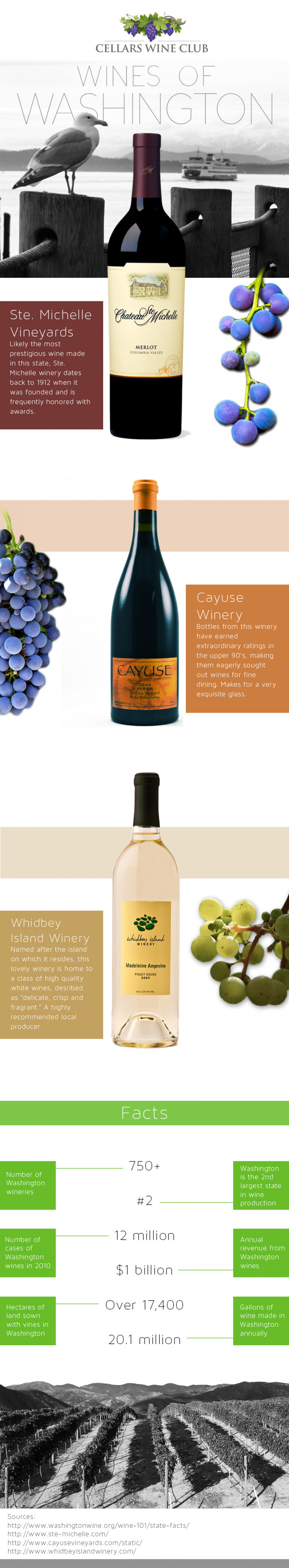 3 Best Wines of Washington Infographic