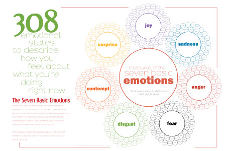 308 Ways to Describe How You Feel: Thesaurus of the Seven Basic Emotions Infographic