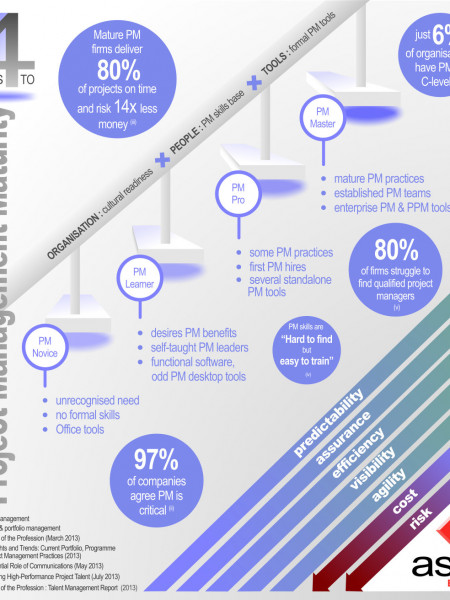 4 Steps to Project Management Maturity Infographic