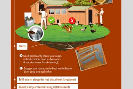 46 Ideas to Help Build The Best Chicken Coop Infographic