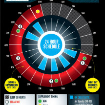 4-Hour Body Infographic