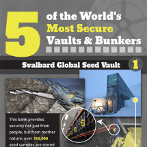 5 of the World's Most Secure Vaults & Bunkers Infographic