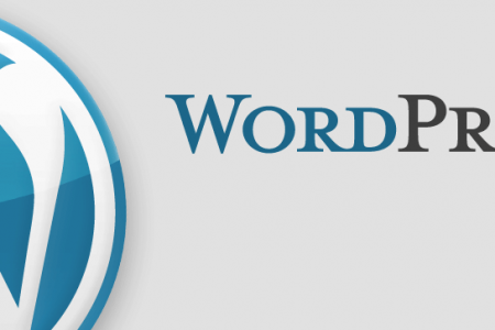 5 simple tips for making an appealing wordpress blog Infographic