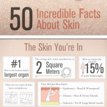 50 Incredible Facts About Skin Infographic