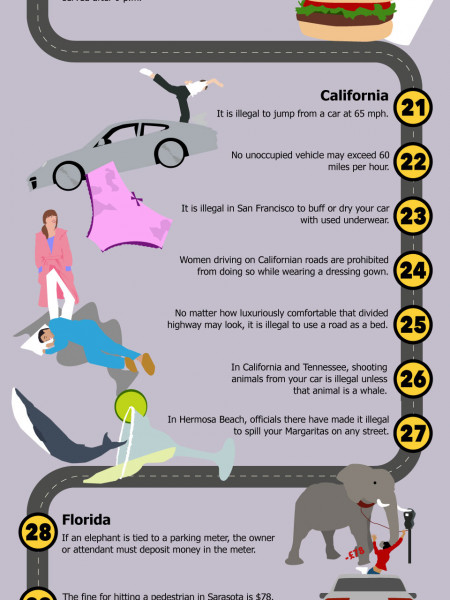 50 Insane Driving Laws From Around The World Infographic