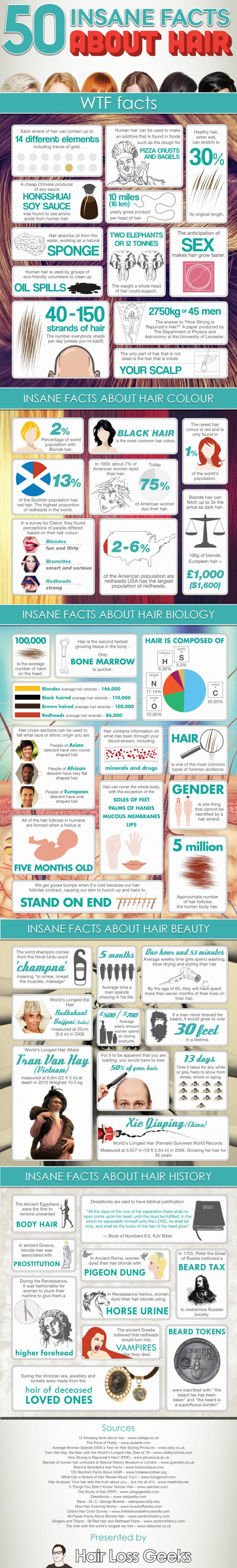 50 Insane Facts About Hair Infographic