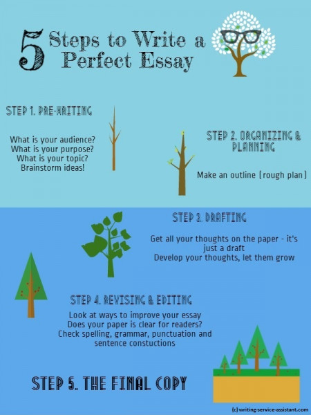 5 Steps to Write a Perfect Essay Infographic
