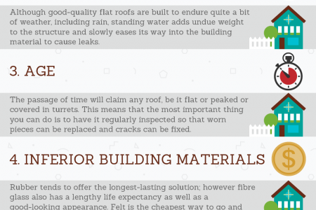 6 Causes of Leaking Roofs Infographic