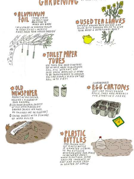 6 Common Household Items to Use in the Garden Infographic