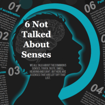 6 not talked about senses Infographic