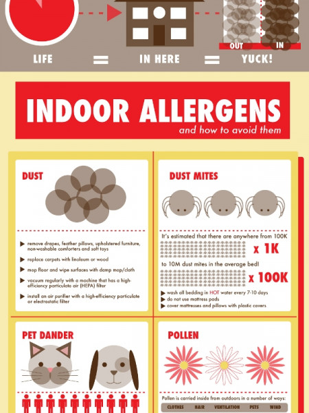 7 Allergens in Your Home: That You Don't Know About  Infographic