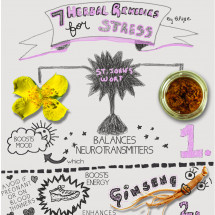 7 Herbal Remedies for Stress Infographic