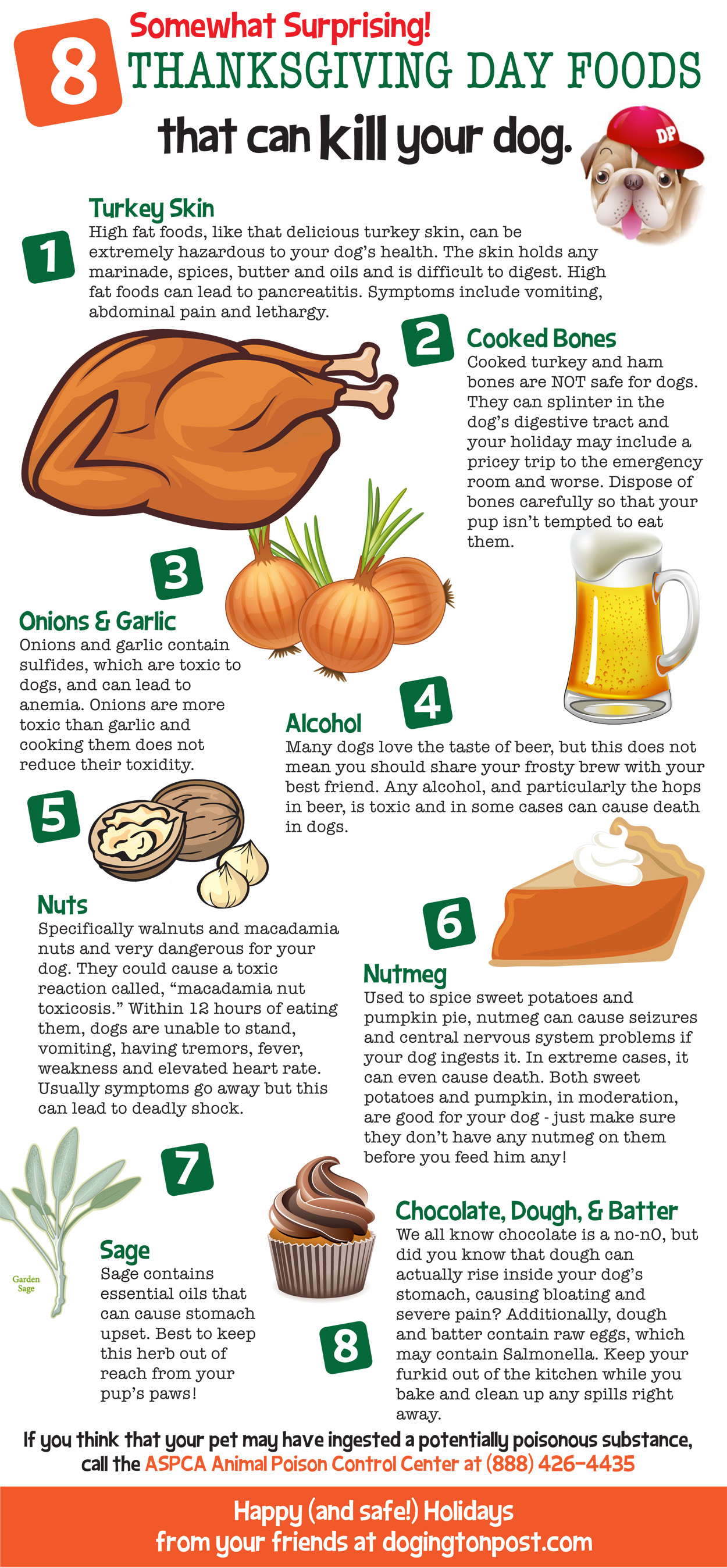 Infographic : Thanksgiving Foods That Can Be Dangerous For Your Dogs