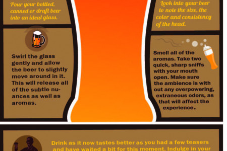 8 Tips for the Perfect Beer Tasting Experience Infographic