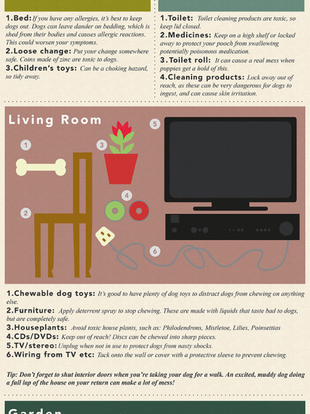 A Dog-Friendly Home Infographic