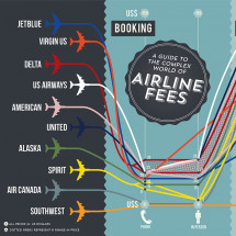 A Guide to the Complex World of Airline Fees Infographic