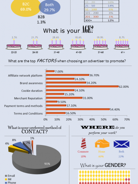 Affiliate Marketing Statistics 2013 Infographic