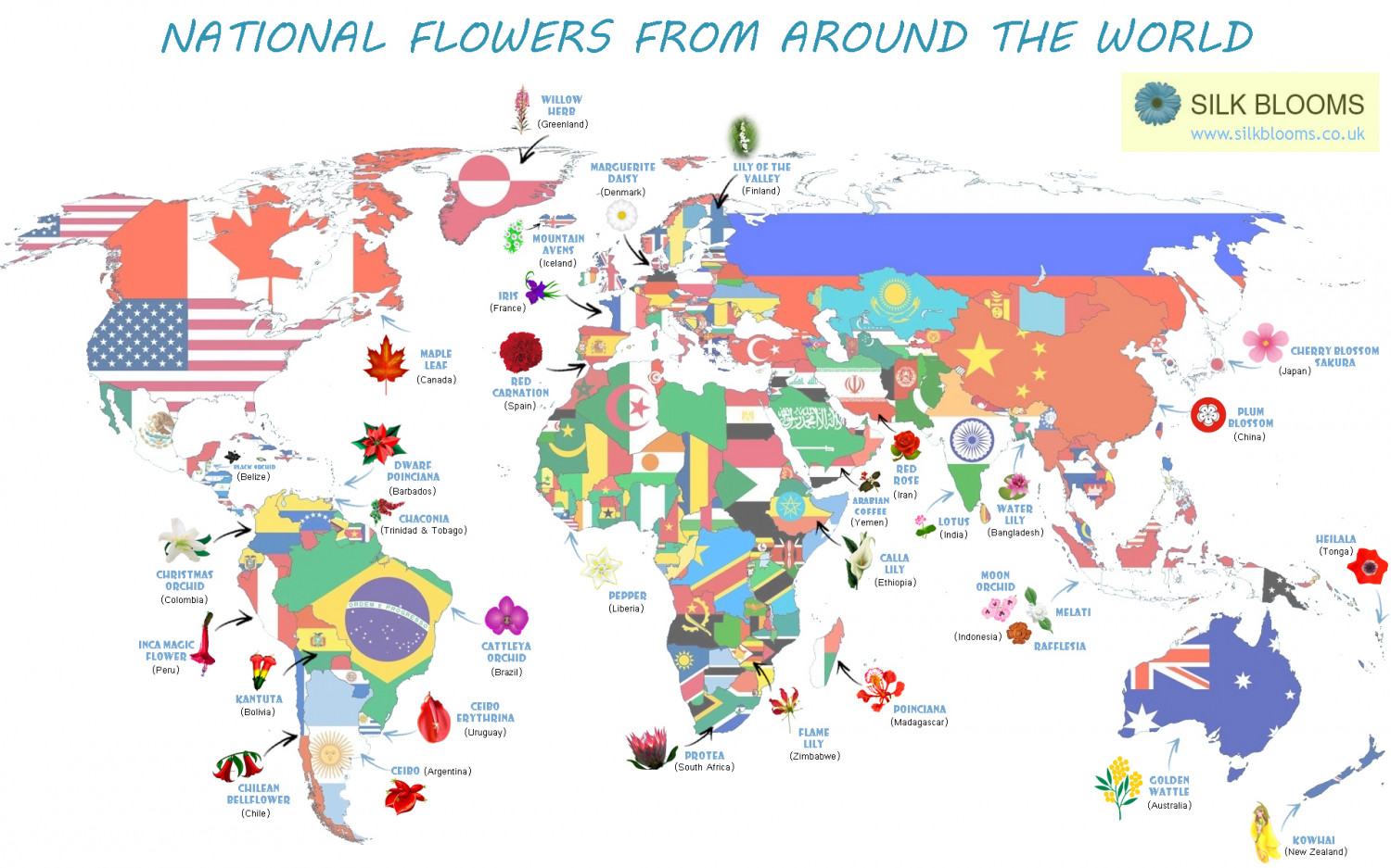 Around the World in 32 Flowers Infographic