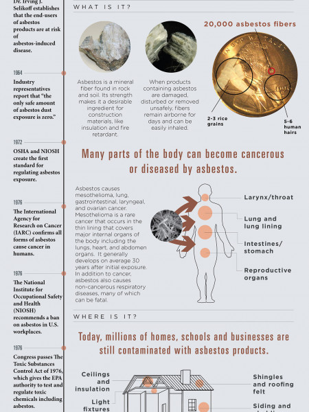 Asbestos: Legal and Lethal in the U.S.A. Infographic