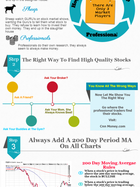 Beginners Guide to Investing Infographic