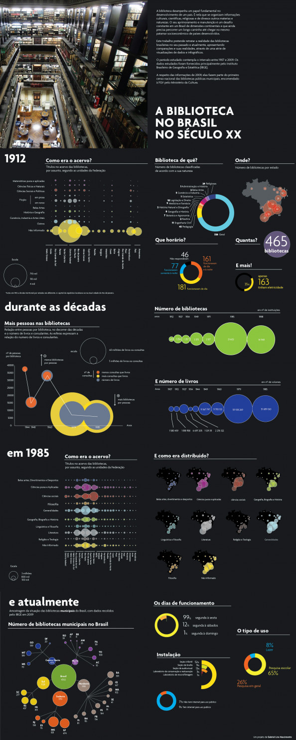 Brazil Library on XX century Infographic