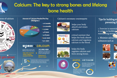 Calcium: The key to strong bones and lifelong bone health Infographic