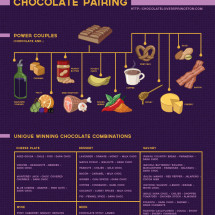 Chocolate Lover's Guide to Chocolate Pairings Infographic