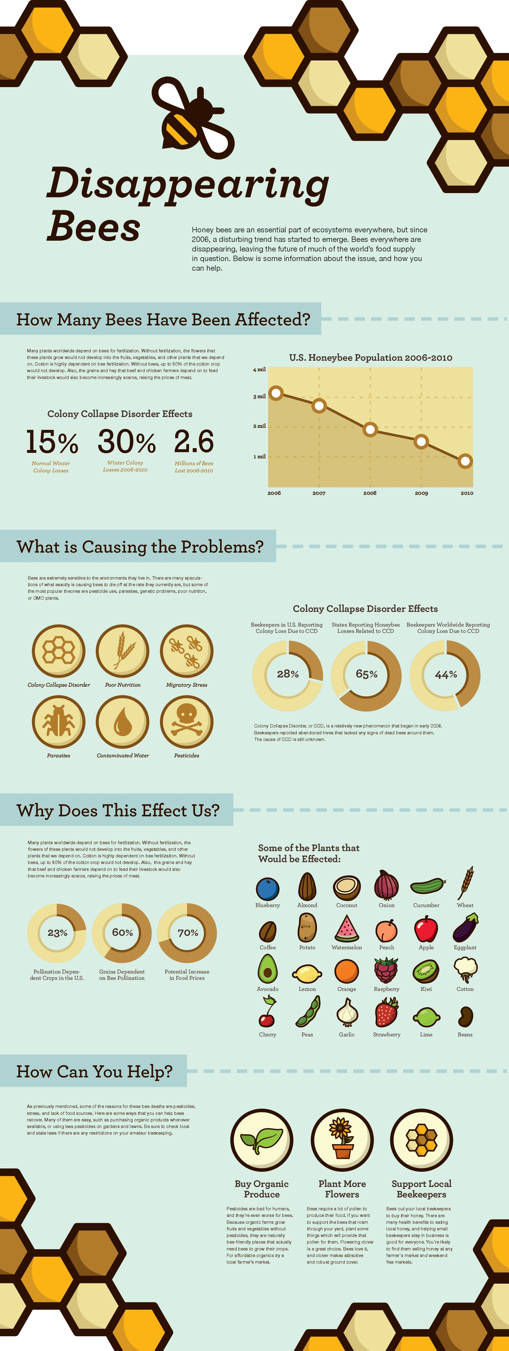 5 Infographics On The Importance Of Bees Amp Bee Friendly