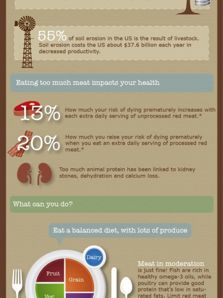 Do You Eat Too Much Protein? Infographic