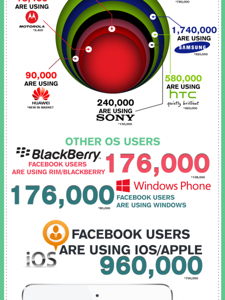 Facebook Mobile Users in Pakistan February 2014 Infographic