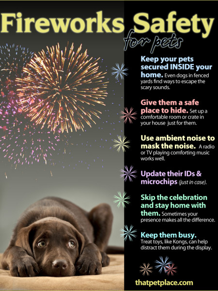 Fireworks Safety Tips for Pets Infographic